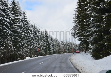 The road among snow-covered forest