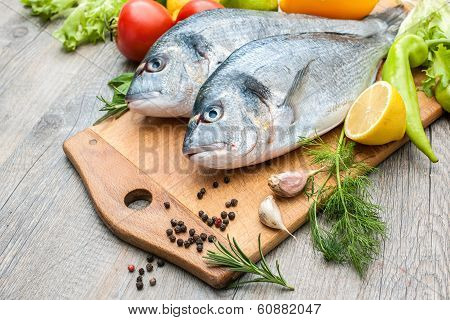 Fresh Raw Fish Gilthead Bream