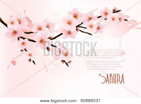 Nature background with blossoming sakura branch. Vector illustration.