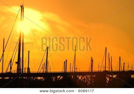 Shadow Of Bridge