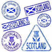pic of scottish thistle  - Scotland different shaped rubber stamp vector illustration - JPG