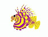 image of lion-fish  - A big lion fish on white background - JPG