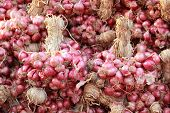 picture of red shallot  - Shallot - asia red onion in market