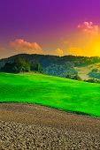 stock photo of plowed field  - Plowed Sloping Hills of Tuscany at Sunset - JPG