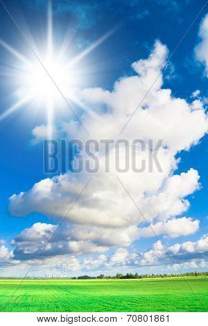 Sunny Field Dream Wallpaper