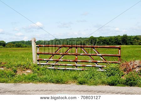 Rusty Metal Fence Protecting A Grazing Field