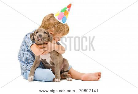 Boy hugs the puppy pitbull