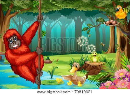 Illustration of an orangutan swinging in the jungle