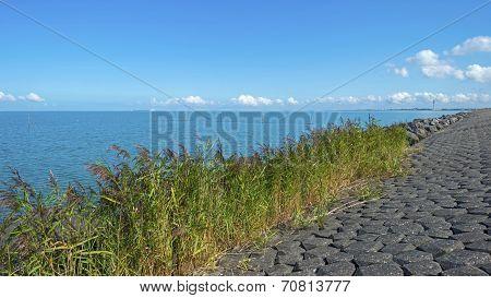 Dike along a lake in summer