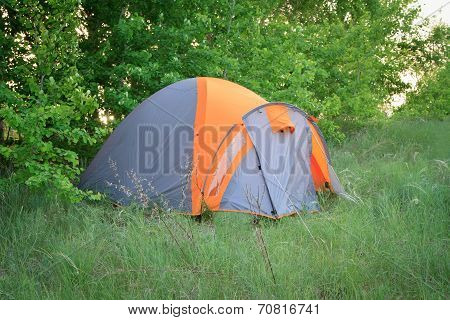 Camoing Tent In The Forest