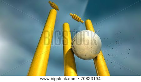 Cricket Ball Hitting Wickets