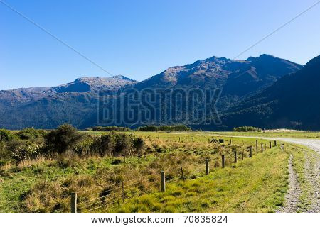 Natural landscape of New Zealand alps and meadows