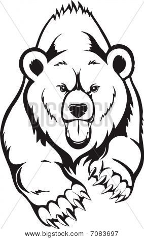 Brown Bear grizzly. Vector