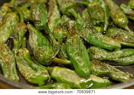 green paprika pimento patron
