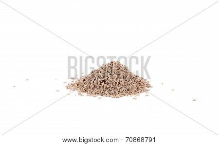 Pile of cumin seeds captured from side.