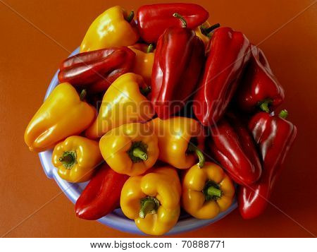 home grown red and yellow peppers in plastic bowl