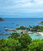 picture of yuan  - Koh Nang yuan Island - JPG