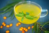 picture of sea-buckthorn  - Tea with sea - JPG