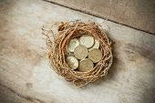 stock photo of bird-nest  - British Pound Coins with Bird Nest and Broken egg - JPG