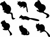 picture of chipmunks  - The Chipmunk Silhouettes includes seven individual animal graphics - JPG