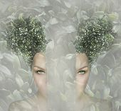 picture of peculiar  - Female artistic portrait divided in two parts surreal concept - JPG
