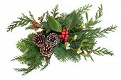 stock photo of mistletoe  - Christmas and winter decoration  with holly - JPG