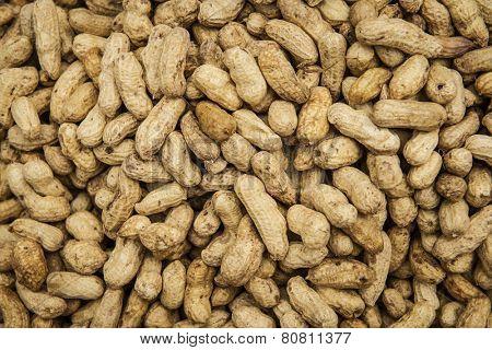 Crude peanuts