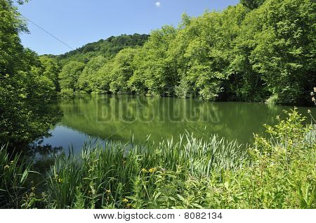 The Lake at Woodchester Park