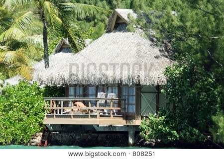 tropical bungalow