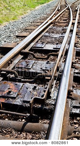 Narrow Guage Railway Points