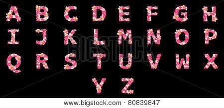 Letters made of flowers, English alphabet, colorful flower font
