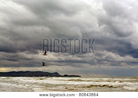 Two Seagulls Fly Over The Sea To Cloudy Weather.