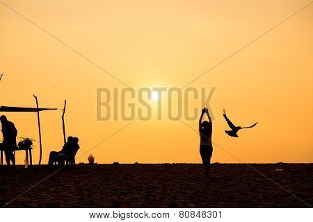Girl and bird at sunset