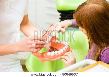 Female dentist explaining girl cleaning tooth with toothbrush on model