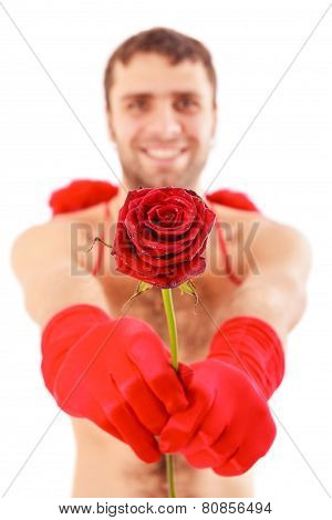 Handsome Man Hold Red Rose