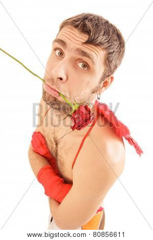Young Man Red Rose Hold In Mouth