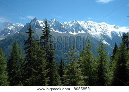 Trees, Peaks And Mont Blanc Nearby Chamonix In Alps In France