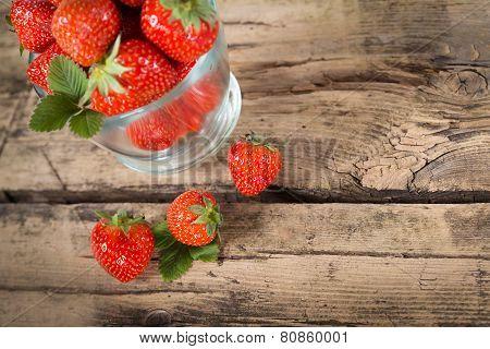 Fresh Stawberry