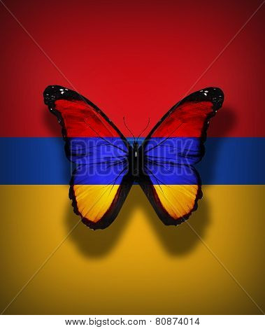 Armenian Flag Butterfly, Isolated On Flag Background