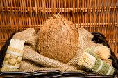 pic of significant  - Coconut is a significant and important crop - JPG