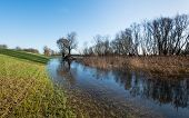 image of dike  - A new dike and bare trees in the wetlands of a Dutch nature reserve on a sunny day in winter - JPG