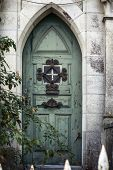 picture of english ivy  - Old Wooden Gate - JPG