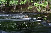 foto of suwannee river  - Small rapids on the Santa Fe River - JPG