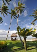 stock photo of beach hut  - The tranquil beaches of the South Pacific Ocean really are paradise found - JPG