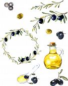 picture of olive branch  - Hand drawn watercolor illustration with olives - JPG