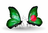 picture of bangladesh  - Two butterflies with flags on wings as symbol of relations Saudi Arabia and Bangladesh - JPG