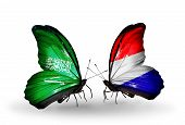 picture of holland flag  - Two butterflies with flags on wings as symbol of relations Saudi Arabia and Holland - JPG