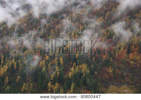 Campiglio Valley