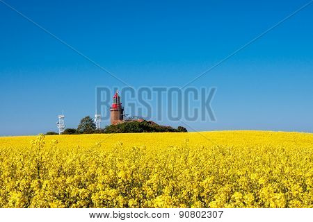 The Lighthouse Of Bastorf