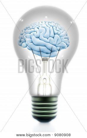 Light Bulb With A Brain